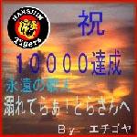 10.000HIT 記念 by越後屋