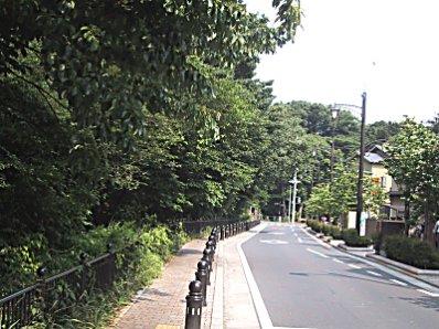 20030606風エンド