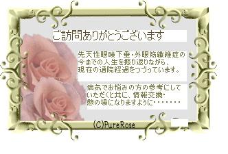 薔薇トップ