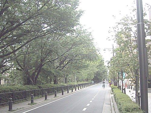 散歩道20020420