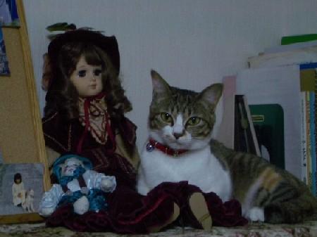 人形とザッシュ1