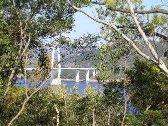 窓から風景(海と大島大橋)
