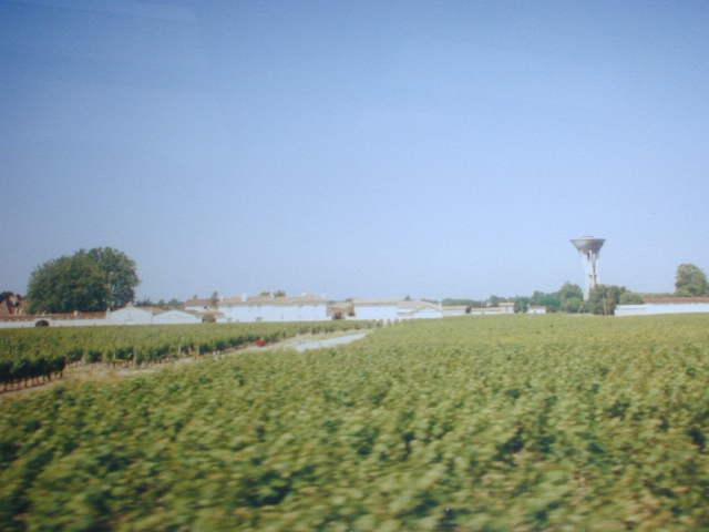 Bordeaux 2000