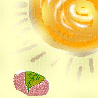 太陽と桜餅