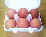 おいしっくす卵1