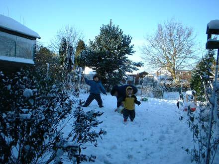 Garden Snow L
