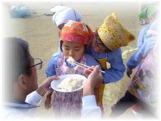 保育園のお餅つき・もち米って美味しいな