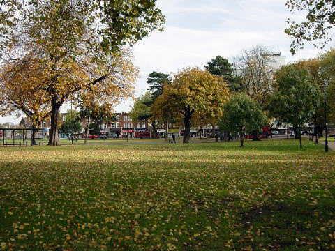 秋の日差しを受ける公園