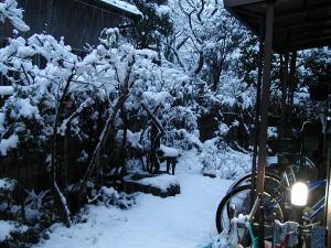 東京の雪(自宅より)