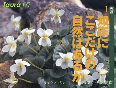 07_siretoko