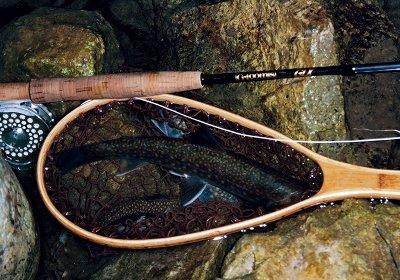 くろい岩魚