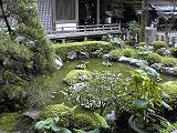 岩間寺蛙池