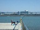 東京湾釣り人