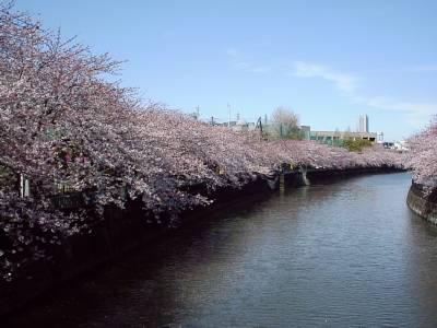 ookagawa