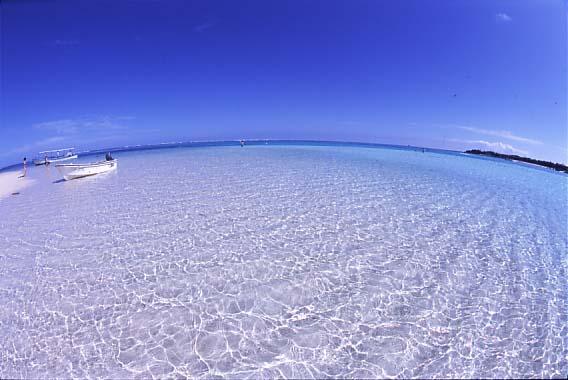 ヨロン島百合が浜