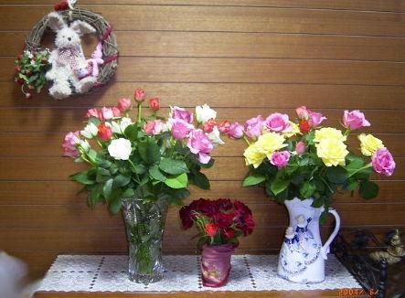 4/6/6薔薇50本♪