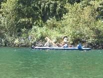 犬とカヌー