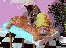 猫マッサージ