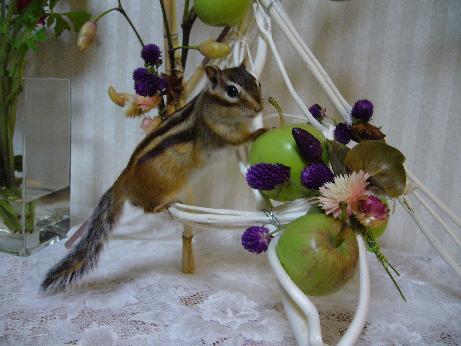 リンゴ泥棒って言わないで!
