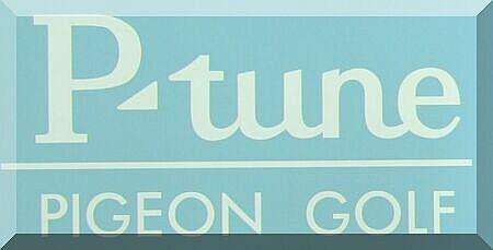 P-tune PIGEON GOLF