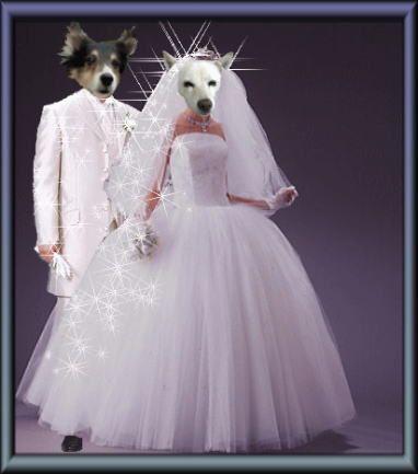 スマちゃんとの結婚式