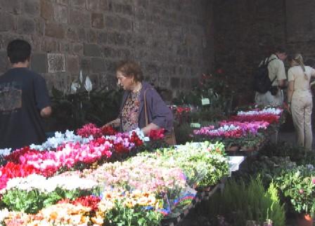 花を選ぶ人々